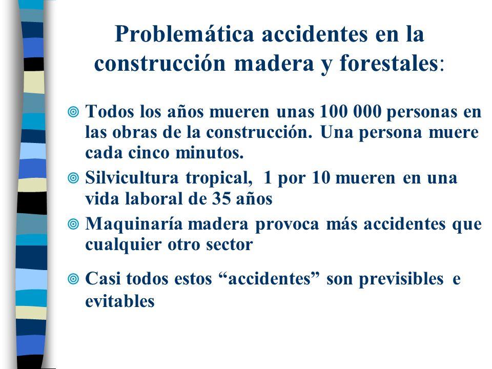Problemática accidentes en la construcción madera y forestales:
