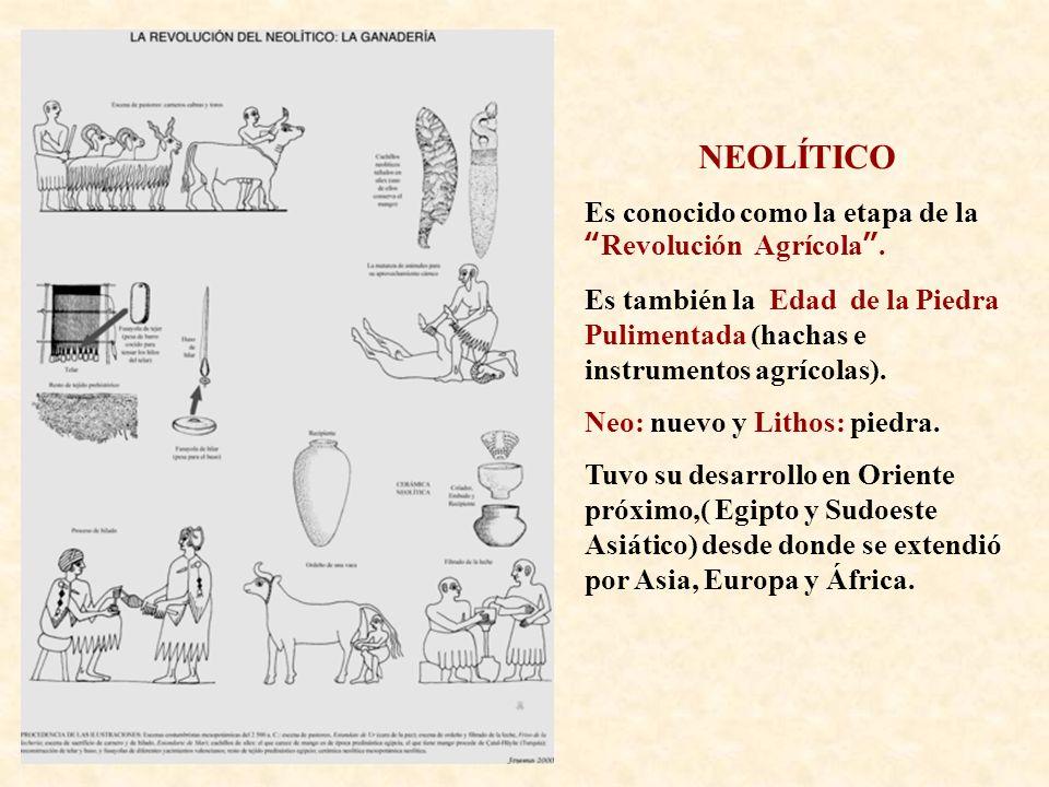 NEOLÍTICO Es conocido como la etapa de la Revolución Agrícola .