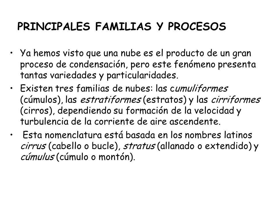 PRINCIPALES FAMILIAS Y PROCESOS