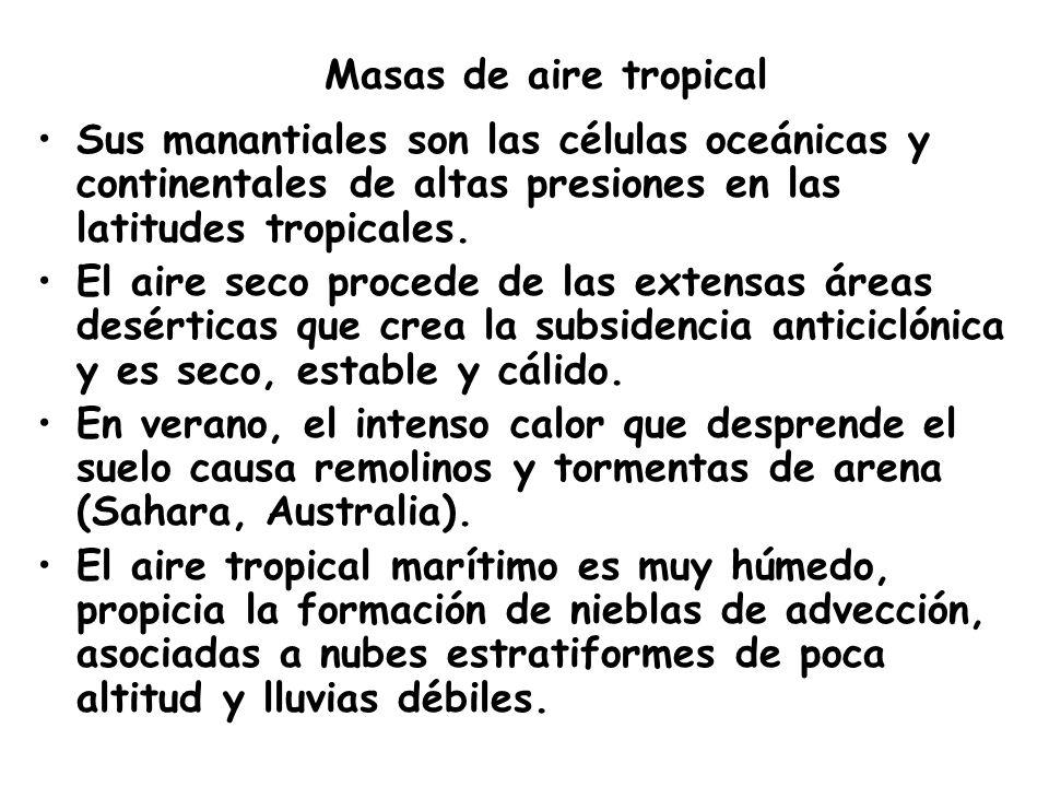 Masas de aire tropical Sus manantiales son las células oceánicas y continentales de altas presiones en las latitudes tropicales.