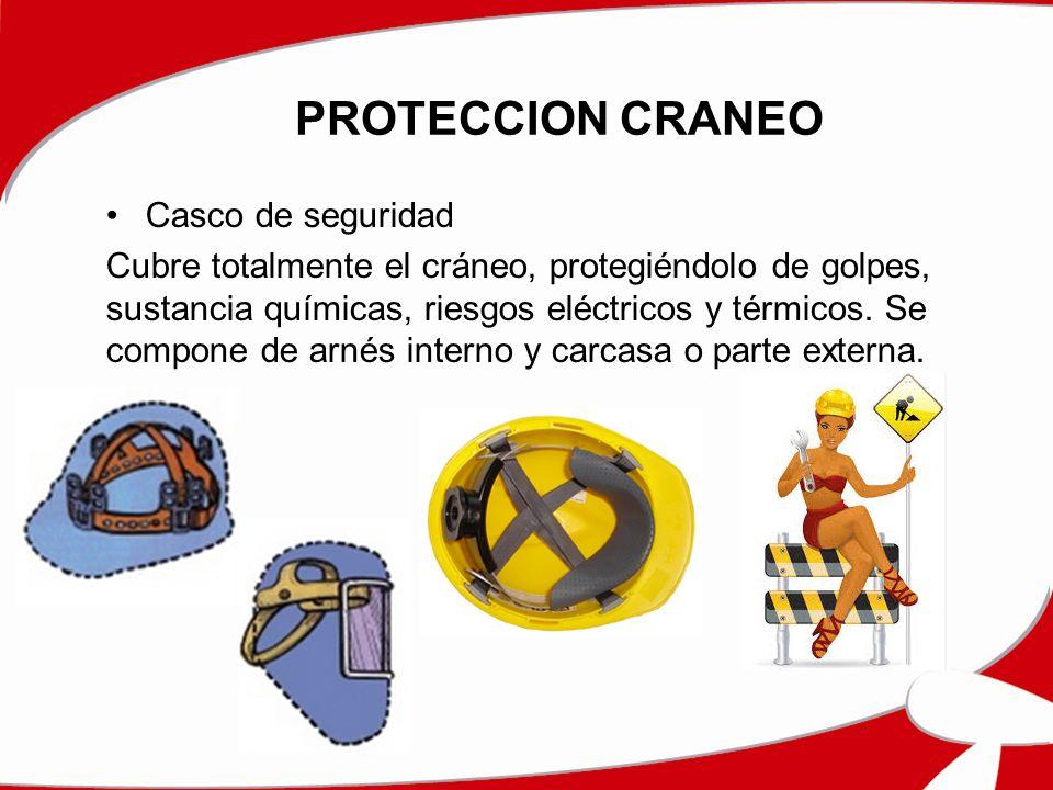 PROTECCION CRANEO Casco de seguridad