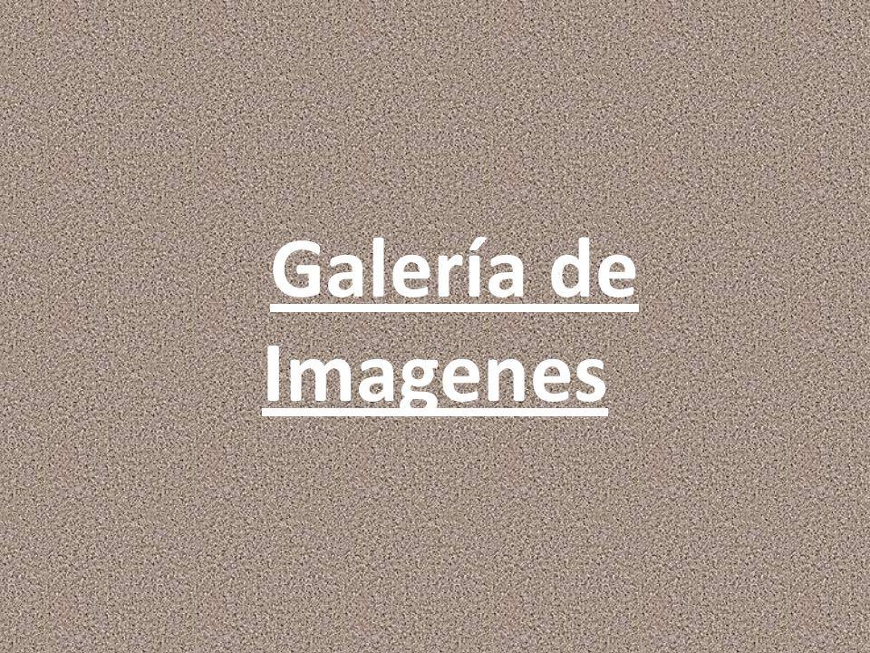 Galería de Imagenes