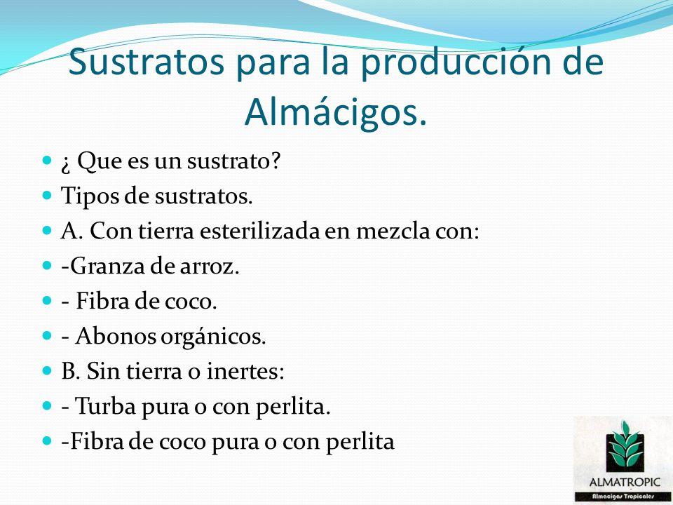 Sustratos para la producción de Almácigos.
