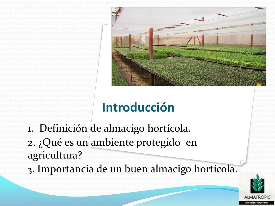 Introducción 1. Definición de almacigo hortícola.