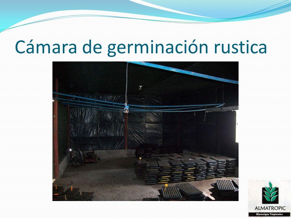 Cámara de germinación rustica