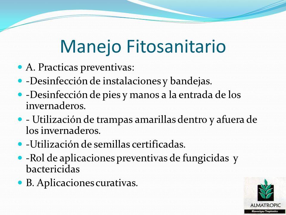 Manejo Fitosanitario A. Practicas preventivas: