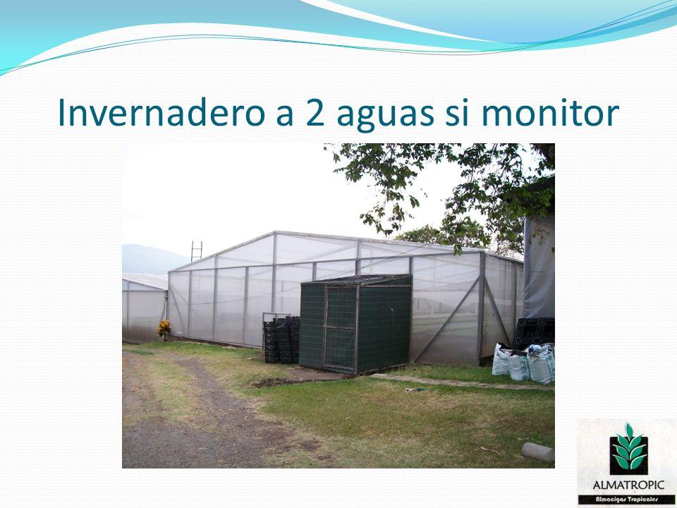 Invernadero a 2 aguas si monitor