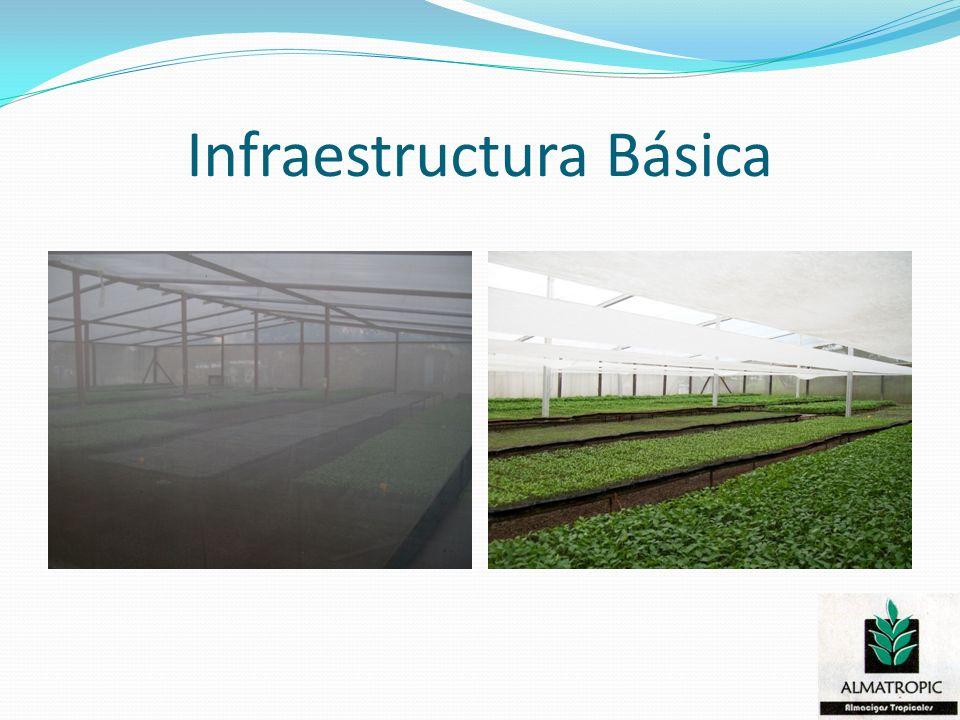 Infraestructura Básica