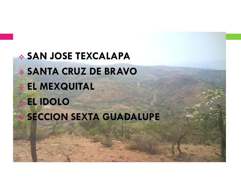 SAN JOSE TEXCALAPA SANTA CRUZ DE BRAVO EL MEXQUITAL EL IDOLO SECCION SEXTA GUADALUPE