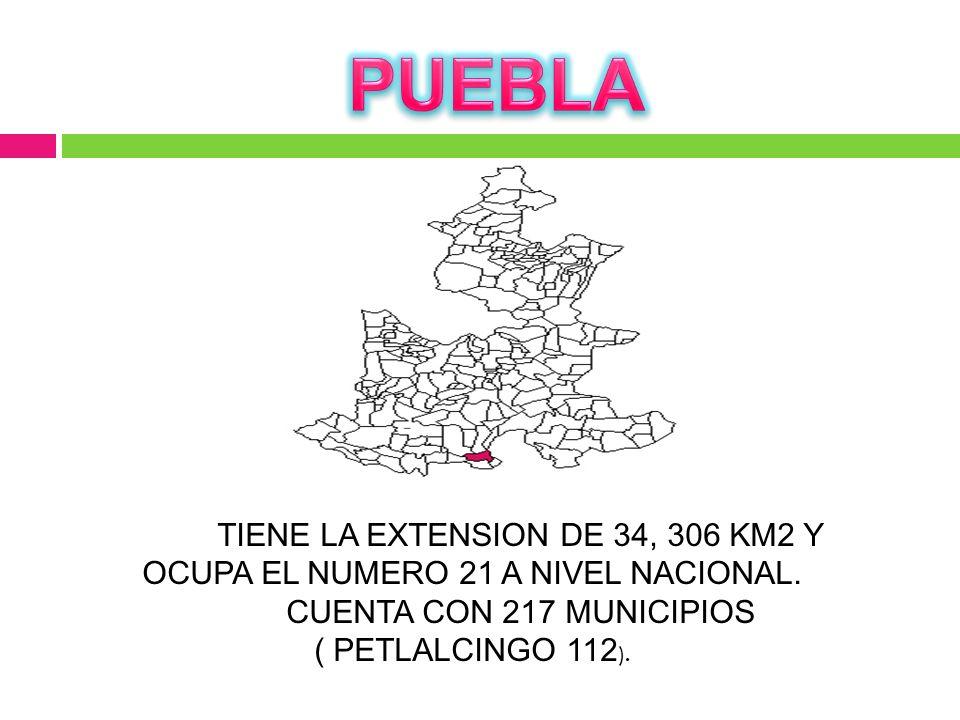 CUENTA CON 217 MUNICIPIOS ( PETLALCINGO 112).