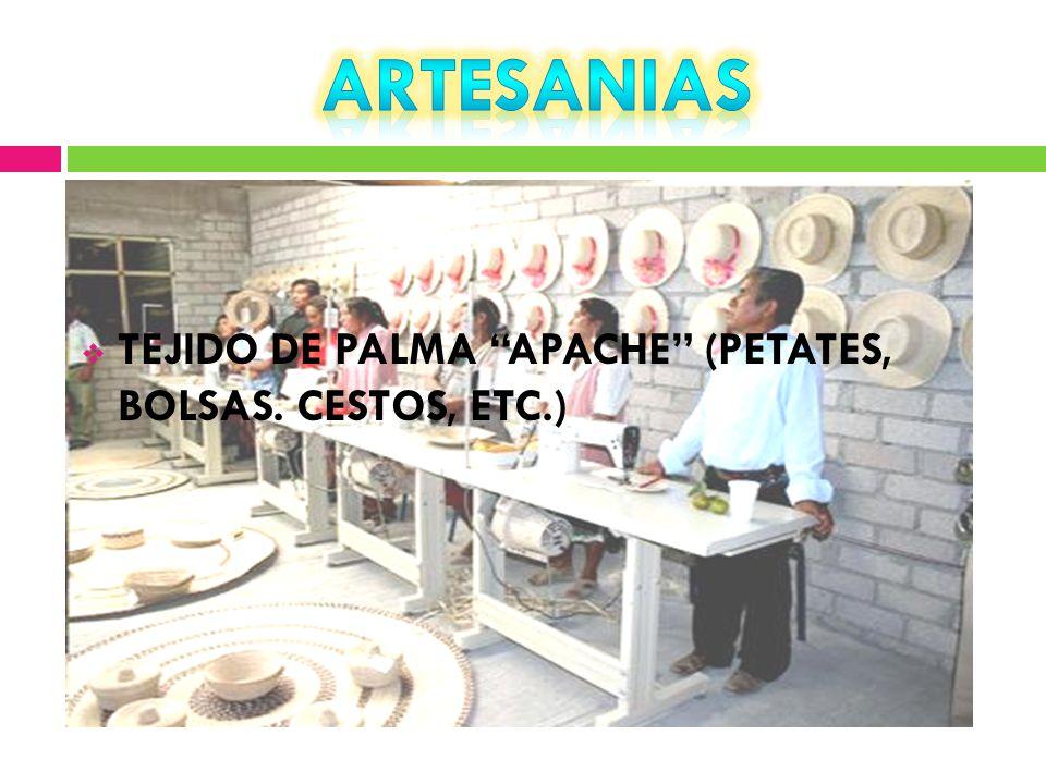 ARTESANIAS TEJIDO DE PALMA APACHE (PETATES, BOLSAS. CESTOS, ETC.)