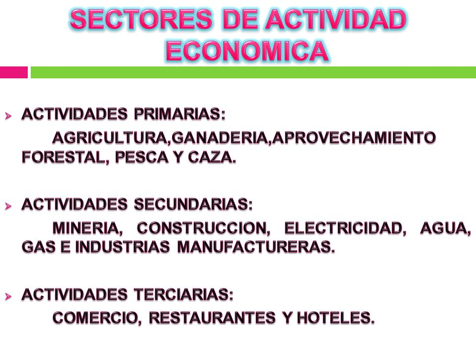 SECTORES DE ACTIVIDAD ECONOMICA