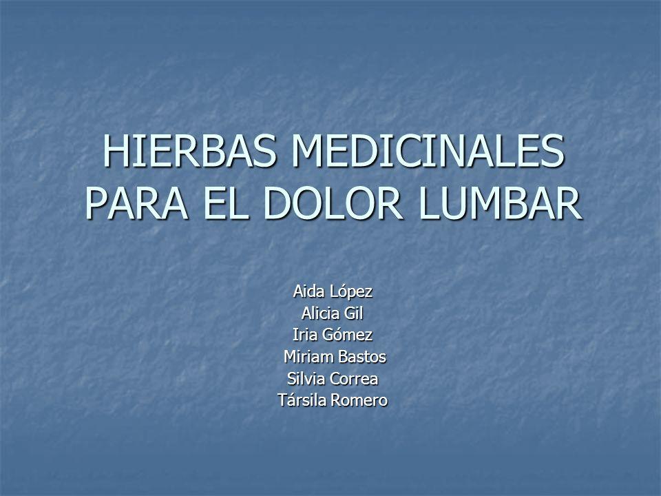 HIERBAS MEDICINALES PARA EL DOLOR LUMBAR