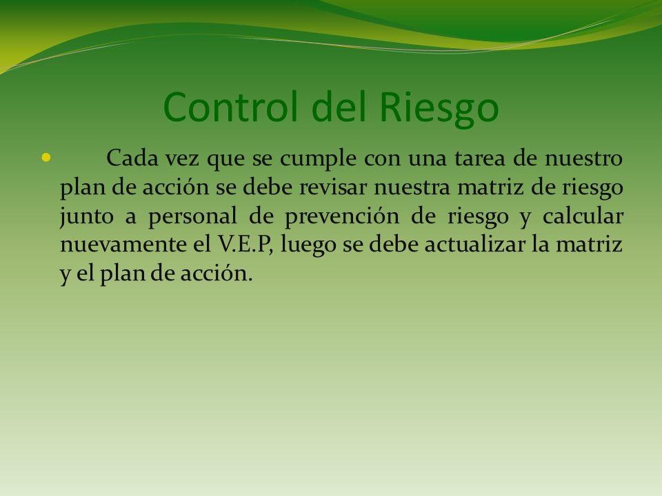 Control del Riesgo