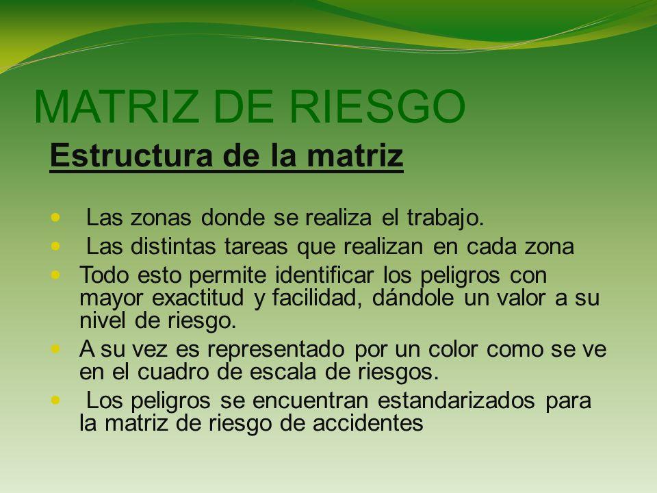 MATRIZ DE RIESGO Estructura de la matriz