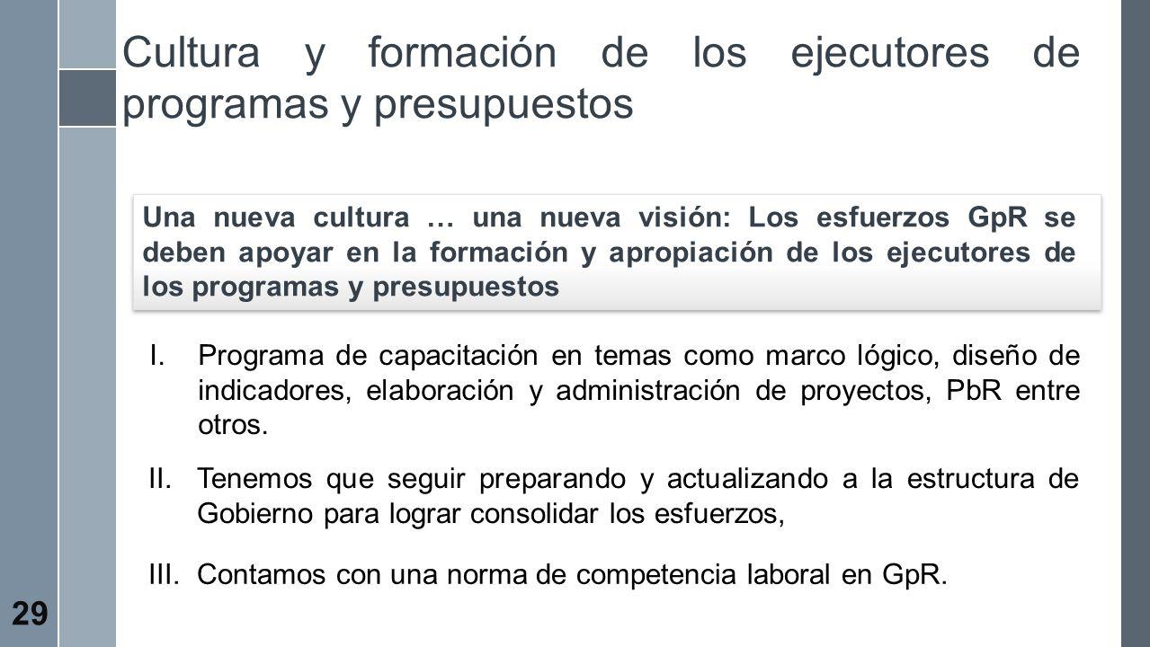 Cultura y formación de los ejecutores de programas y presupuestos