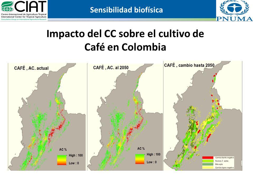 Sensibilidad biofísica Impacto del CC sobre el cultivo de