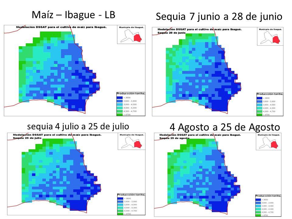 Maíz – Ibague - LB Sequia 7 junio a 28 de junio