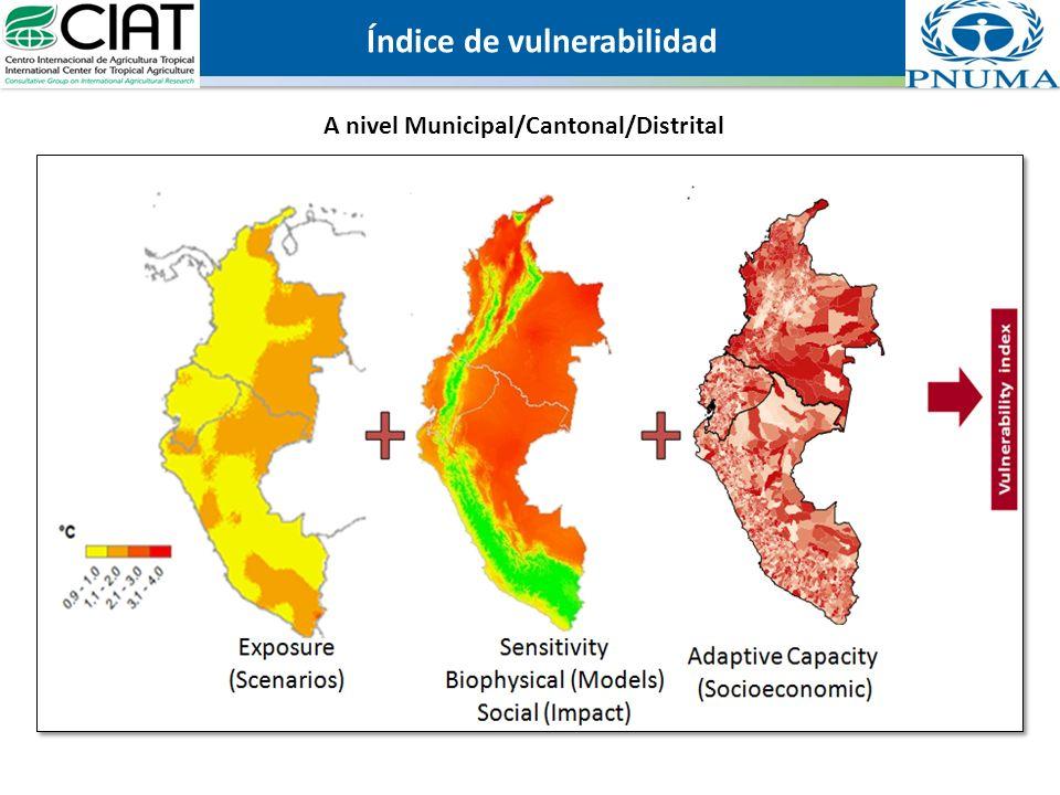 Índice de vulnerabilidad A nivel Municipal/Cantonal/Distrital