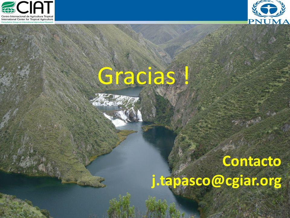 Gracias ! Contacto j.tapasco@cgiar.org