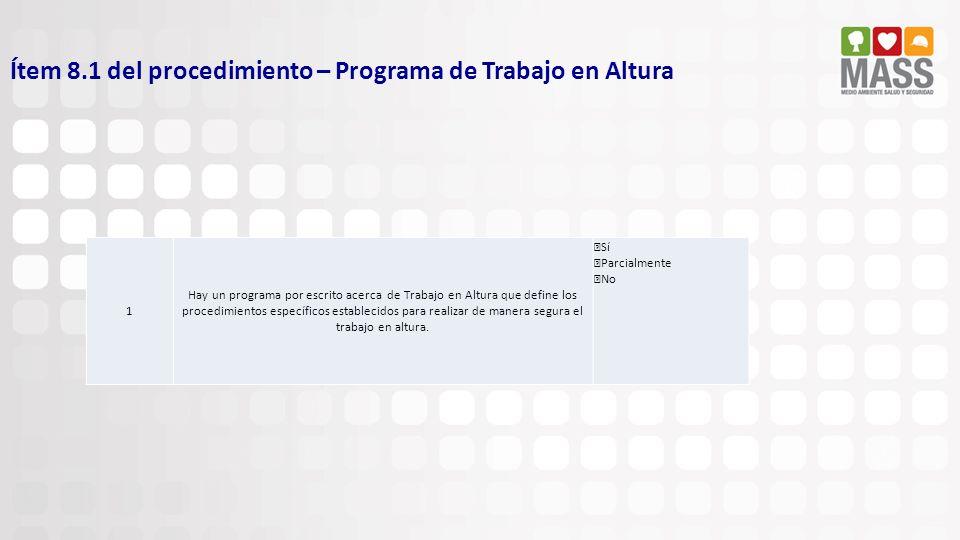 Ítem 8.1 del procedimiento – Programa de Trabajo en Altura