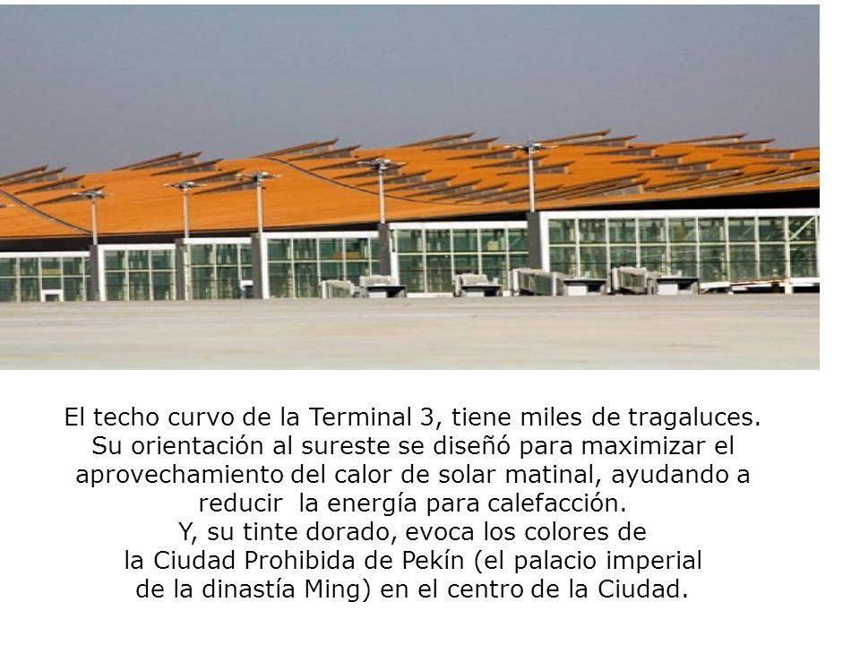 El techo curvo de la Terminal 3, tiene miles de tragaluces.