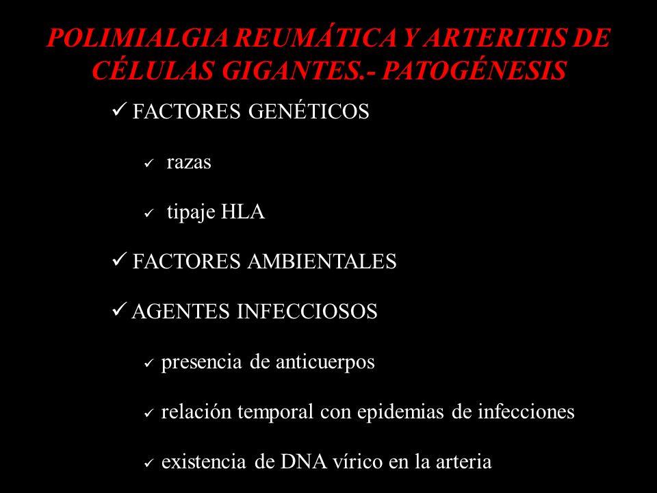 POLIMIALGIA REUMÁTICA Y ARTERITIS DE CÉLULAS GIGANTES.- PATOGÉNESIS