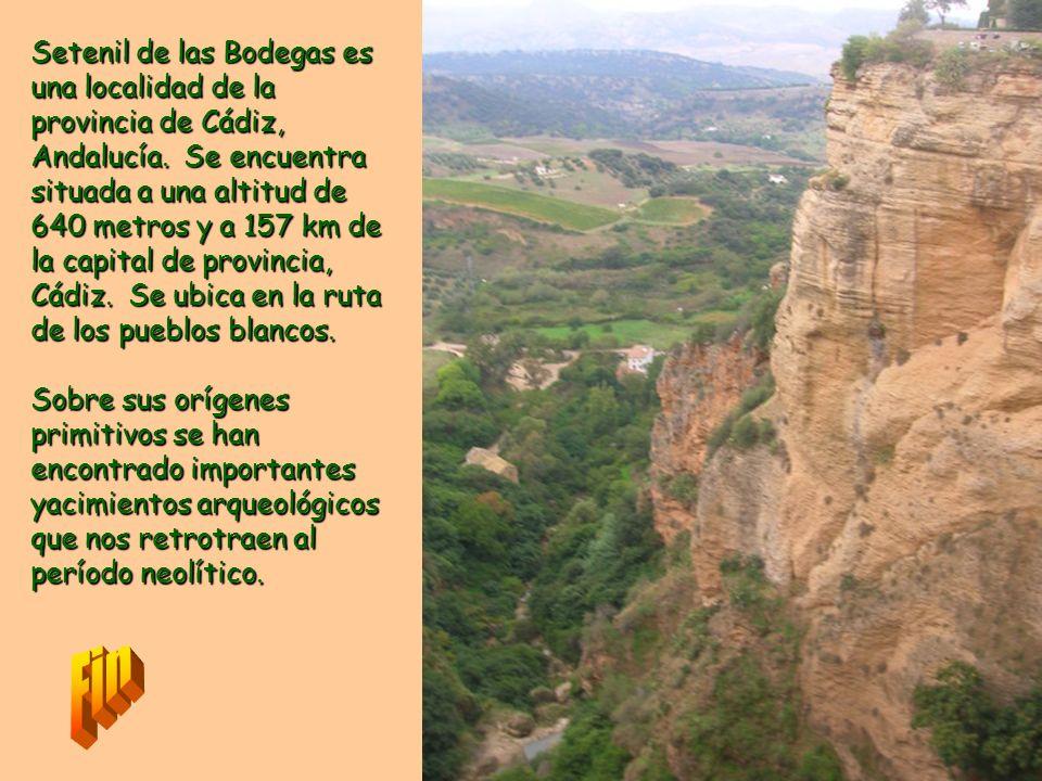 Setenil de las Bodegas es una localidad de la provincia de Cádiz, Andalucía. Se encuentra situada a una altitud de 640 metros y a 157 km de la capital de provincia, Cádiz. Se ubica en la ruta de los pueblos blancos.