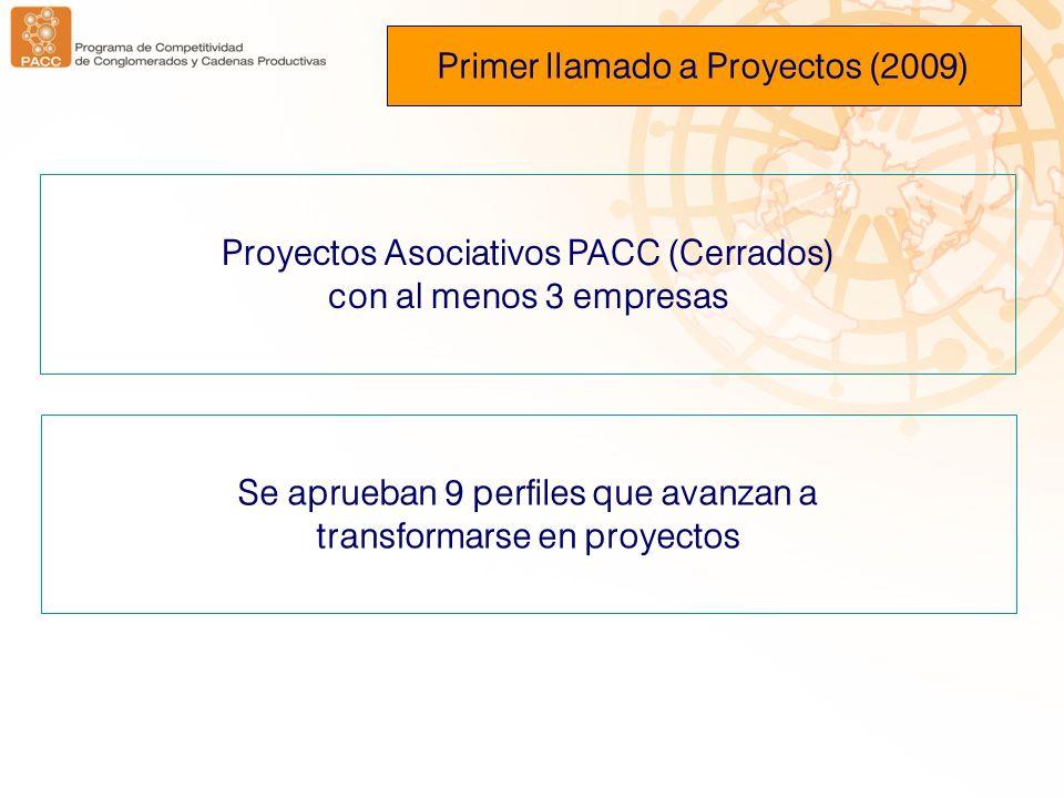 Primer llamado a Proyectos (2009)