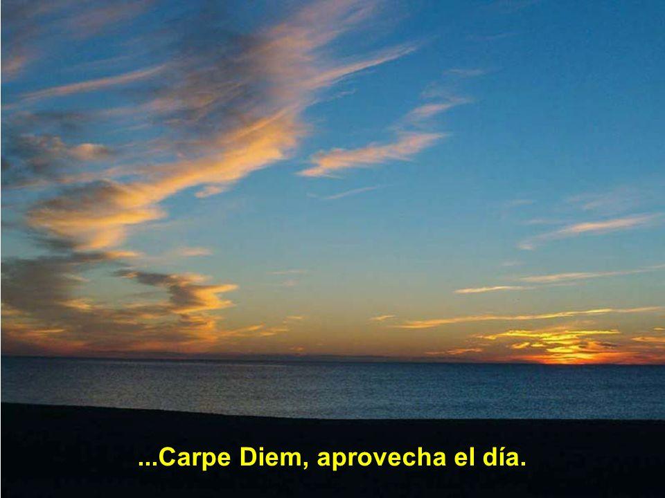 ...Carpe Diem, aprovecha el día.