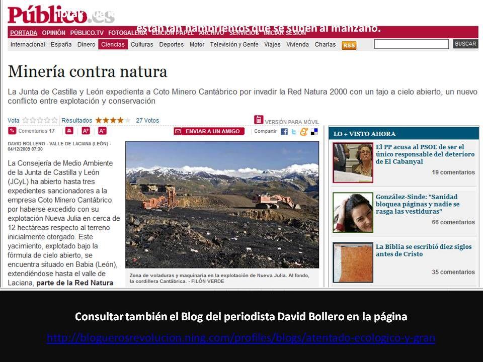 Consultar también el Blog del periodista David Bollero en la página