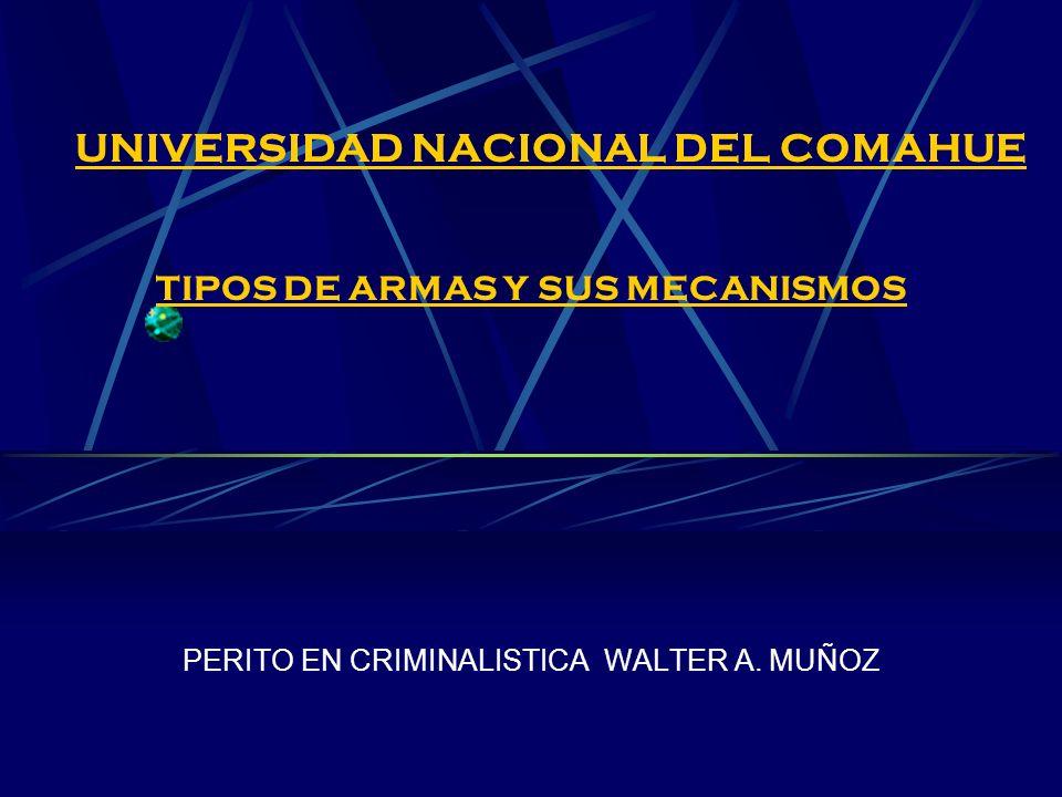 UNIVERSIDAD NACIONAL DEL COMAHUE TIPOS DE ARMAS Y SUS MECANISMOS