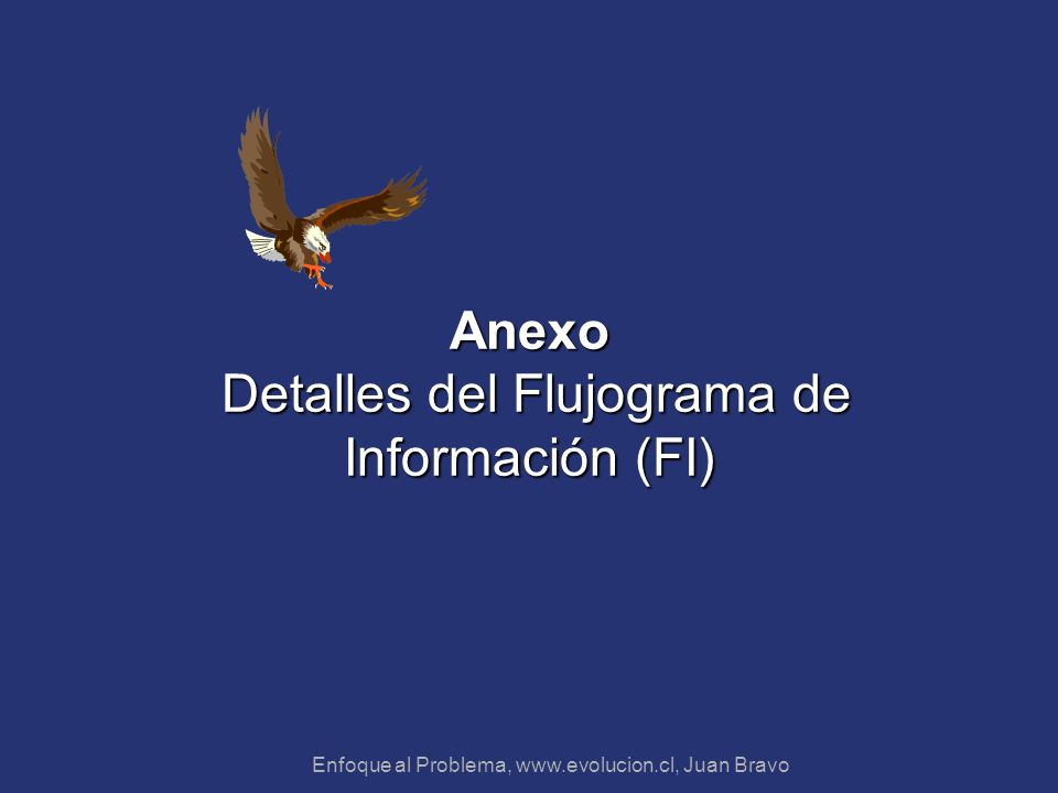 Anexo Detalles del Flujograma de Información (FI)