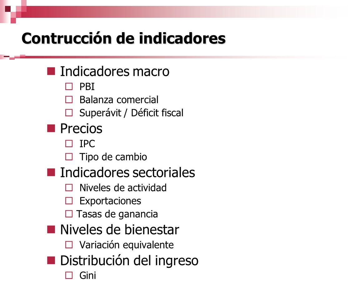 Contrucción de indicadores
