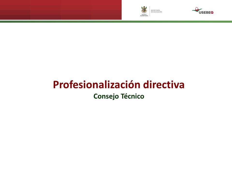 Profesionalización directiva