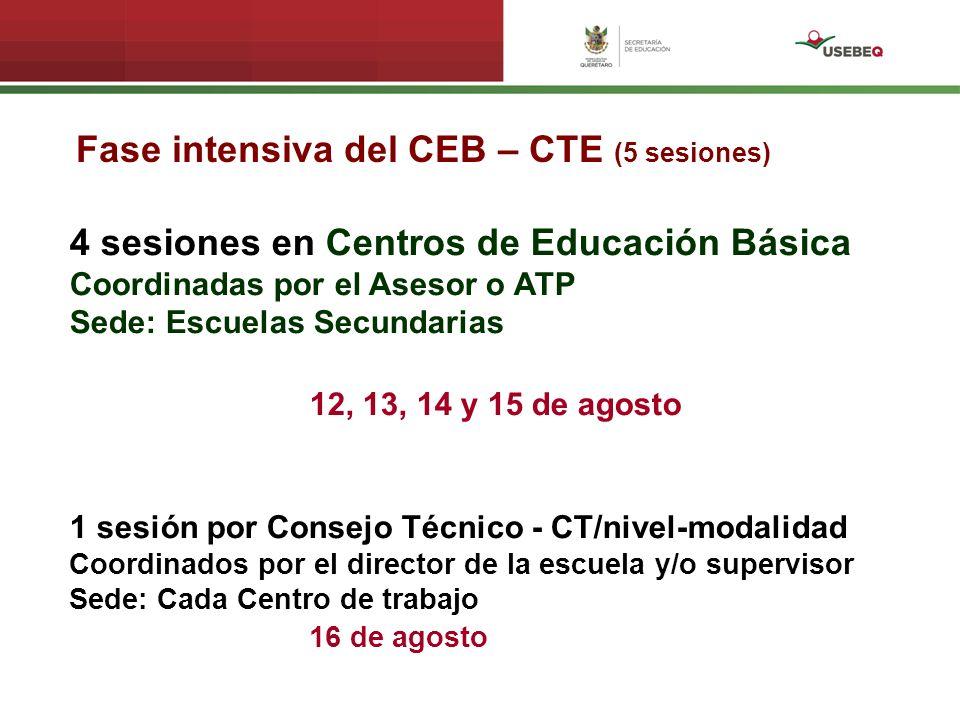 Fase intensiva del CEB – CTE (5 sesiones)