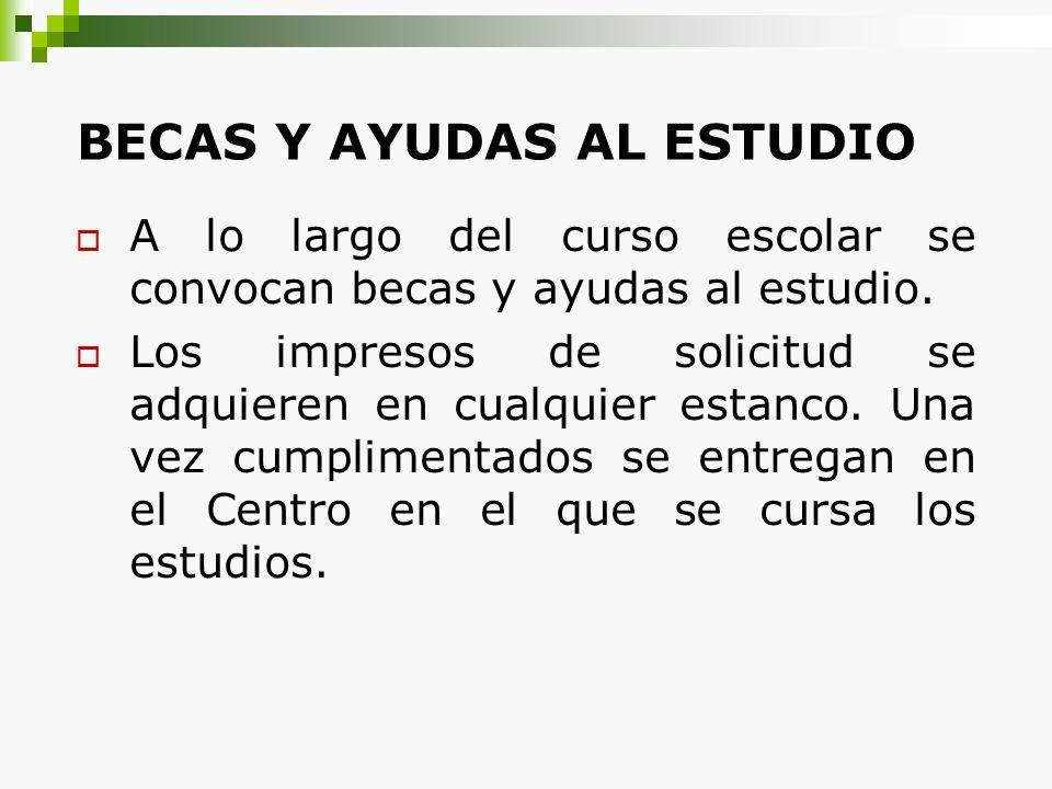 BECAS Y AYUDAS AL ESTUDIO