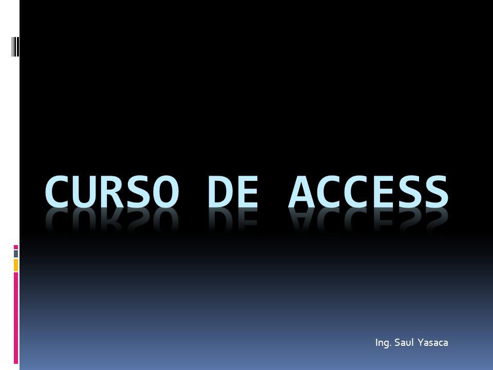 CURSO DE ACCESS Ing. Saul Yasaca