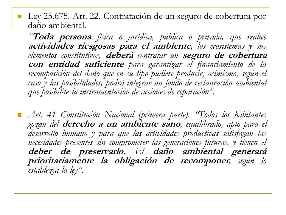 Ley 25.675. Art. 22. Contratación de un seguro de cobertura por daño ambiental.