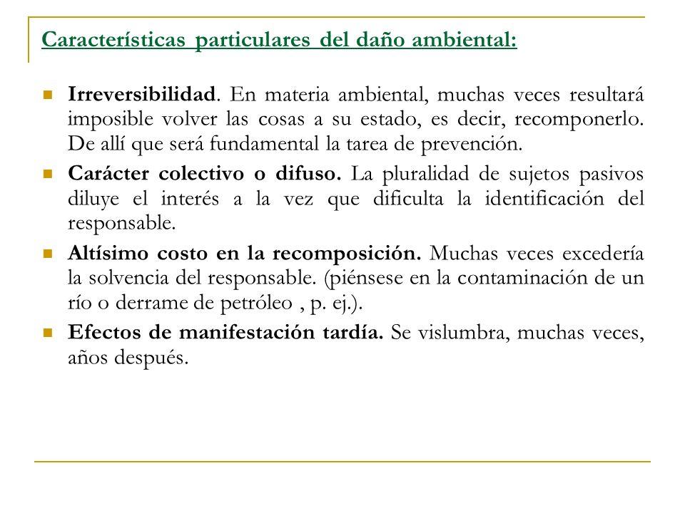 Características particulares del daño ambiental: