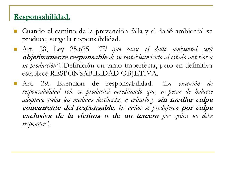 Responsabilidad. Cuando el camino de la prevención falla y el dañó ambiental se produce, surge la responsabilidad.