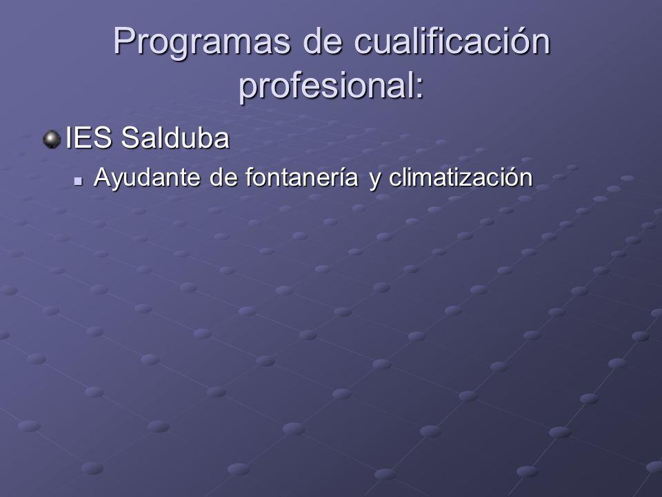 Programas de cualificación profesional: