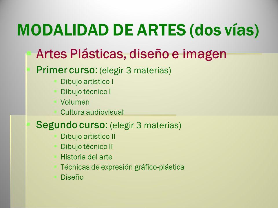 MODALIDAD DE ARTES (dos vías)