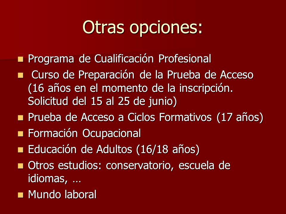 Otras opciones: Programa de Cualificación Profesional