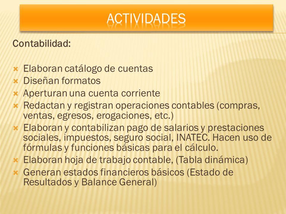 Actividades Contabilidad: Elaboran catálogo de cuentas