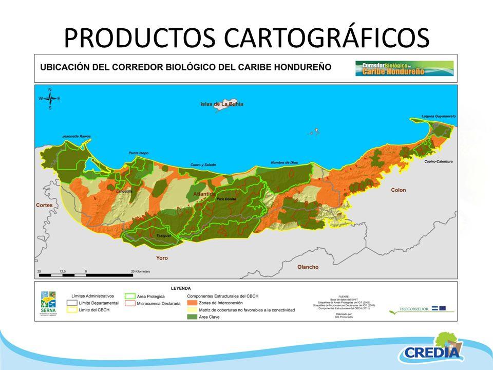 PRODUCTOS CARTOGRÁFICOS