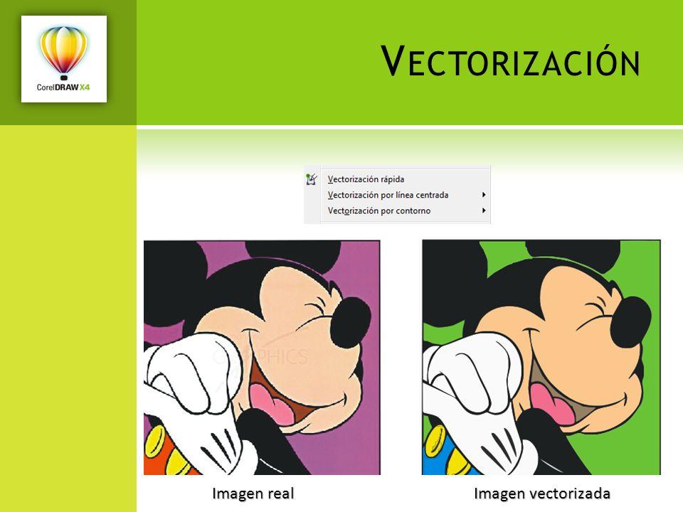 Vectorización Imagen real Imagen vectorizada