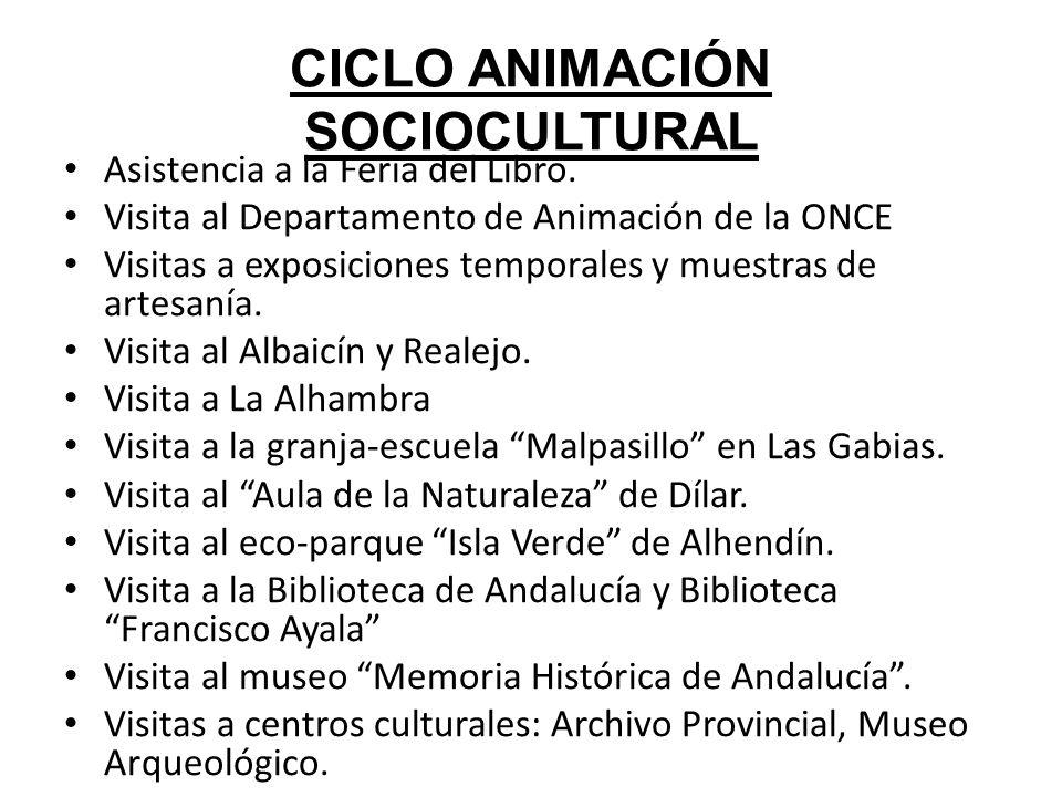 CICLO ANIMACIÓN SOCIOCULTURAL