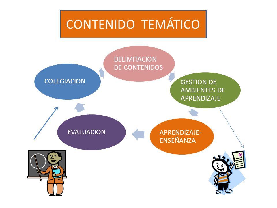 CONTENIDO TEMÁTICO DELIMITACION DE CONTENIDOS