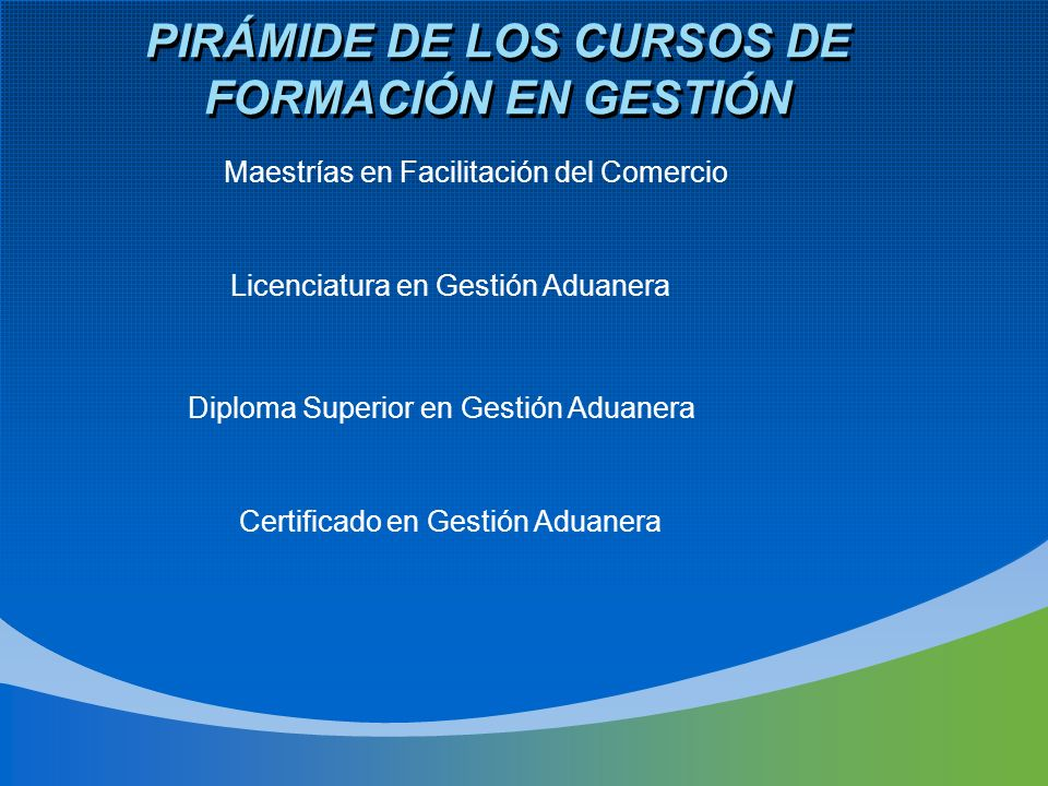 PIRÁMIDE DE LOS CURSOS DE FORMACIÓN EN GESTIÓN